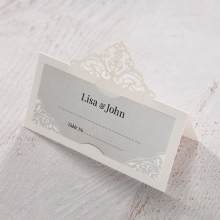 Elegant Crystal Lasercut Pocket wedding reception place card stationery item