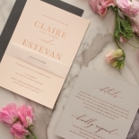 Shades of Grey and Blush with Rose Gold Foil  - Wedding Invitations - WP301GG - 178221