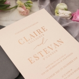 Shades of Grey and Blush with Rose Gold Foil  - Wedding Invitations - WP301GG - 178218