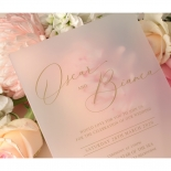 Frosted Acrylic Elegance - Wedding Invitations - BON-GOLD-F-1 - 178641