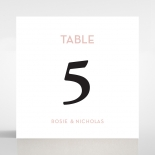 Clear Chic Charm Paper wedding venue table number card