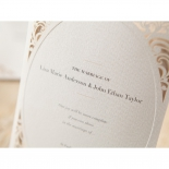 Die frame designed wedding card  with classic elegant fonts